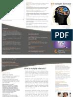 Ms Folleto Copia Final PDF