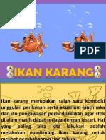 Ikan Karang Biolaslide Rmabp2