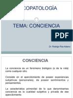 Clase 4 Conciencia 2013
