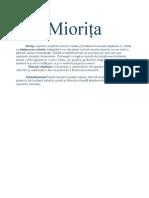 Miorița