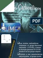 acidos carboxílicos B