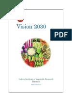 IIVRVision2030 (1).pdf