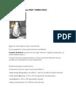 Historia Enfermagem 1 Capitulo 1 Ano de Enfermagem 20130219171458