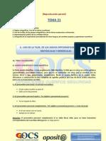 modulo00-Tema21-ortografia