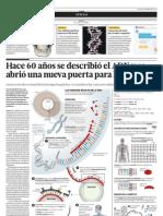 Hace 60 años se describió el ADN y se abrió una nueva puerta para la ciencia