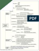 Estructura de la misión diplomática II