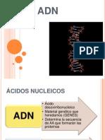 ADN Mabravo 2013(1)
