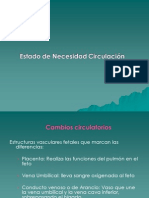 estado_de_necesidad_circulacin_201_-_2010.ppt