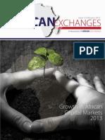 ASEA Newsletter 2013 February Edition.pdf