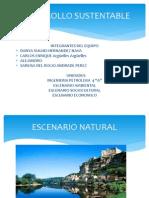 DESARROLLO SUSTENTABLE NUEVA EXPO 2 (1).pptx