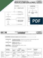 GYNECO.pdf