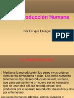 Presentación Tema 4 Enrique