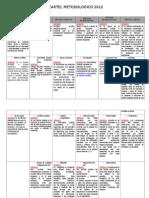 Cartel Metodologico 2012