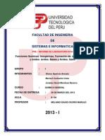 Pre Informe N-4 Funciones Químicas  Inorgánicas- VF