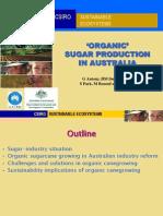 Australia Sugar