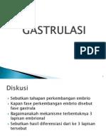 9 Gastrulasi 2011