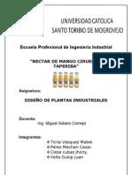 DISEÑO DE PLANTA - TAPERIBA