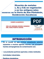 PROTOCOLO CORREGIDO.ppt