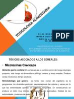 TOXICOLOGIA ALIMENTARIA_Taller_Diana-Monica-Sandra.pptx
