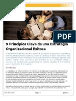 9 Principios Claves de Una Estrategia Organizacional Exitosa