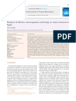 Prospects of Effective Microorganisms Technology in Wastes Treatment in Eygept