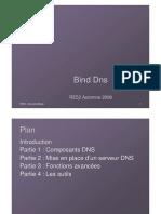 Binds DNS