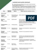 Objawy mięśniowe uszkodzeń nerwów splotów rdzeniowych.pdf