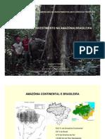 [po]Atração_de_Investimentos_na_Amazônia_Brasileira_(PDF)__Evaristo_Terezo