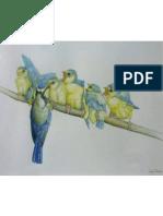 Pagaré - Fuente Wordpress