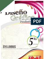 Syllabus v Ciclo Dg 2013
