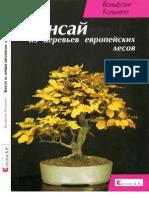 В.Кольхепп - Бонсай из деревьев европейских лесов