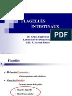 flagellees_intestinaux