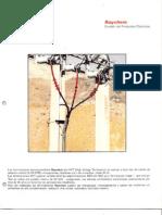 04210265.pdf