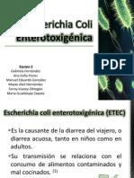 Escherichia Coli Enterotoxigénica.pptx