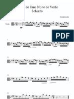 Viola Mendelssohn Sonho de Uma Noite de Verao