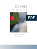 The_Essenes_of_today.pdf