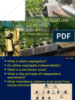 Mr. Cruz 11-3 Exploring Mendelian Genetics