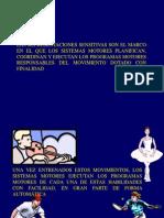 3la Neurofisiologia Del Movimiento (2 Parte) (1)