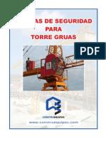 Manual de Seguridad Torre Gruas 2011