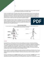 Patologias das Articulações