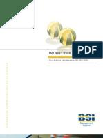 Guia Implantar ISO 9000