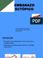 20110221 Mi Expo Ee.pptectopico