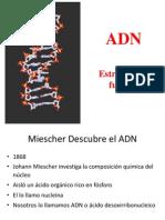 Clase ADN