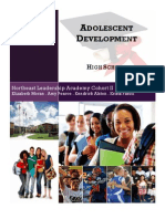 High School Developmental Project - Developmental Areas