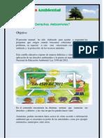 Cartilla Ambiental Derechos Work