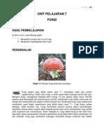 Unit 7 Fungi