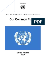 Our Common Future-Brundtland Report 1987