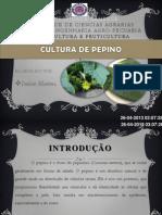 pepino.pptx
