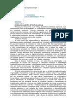 Desenvolvimento Organizacional II