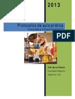 Protocolos Física III